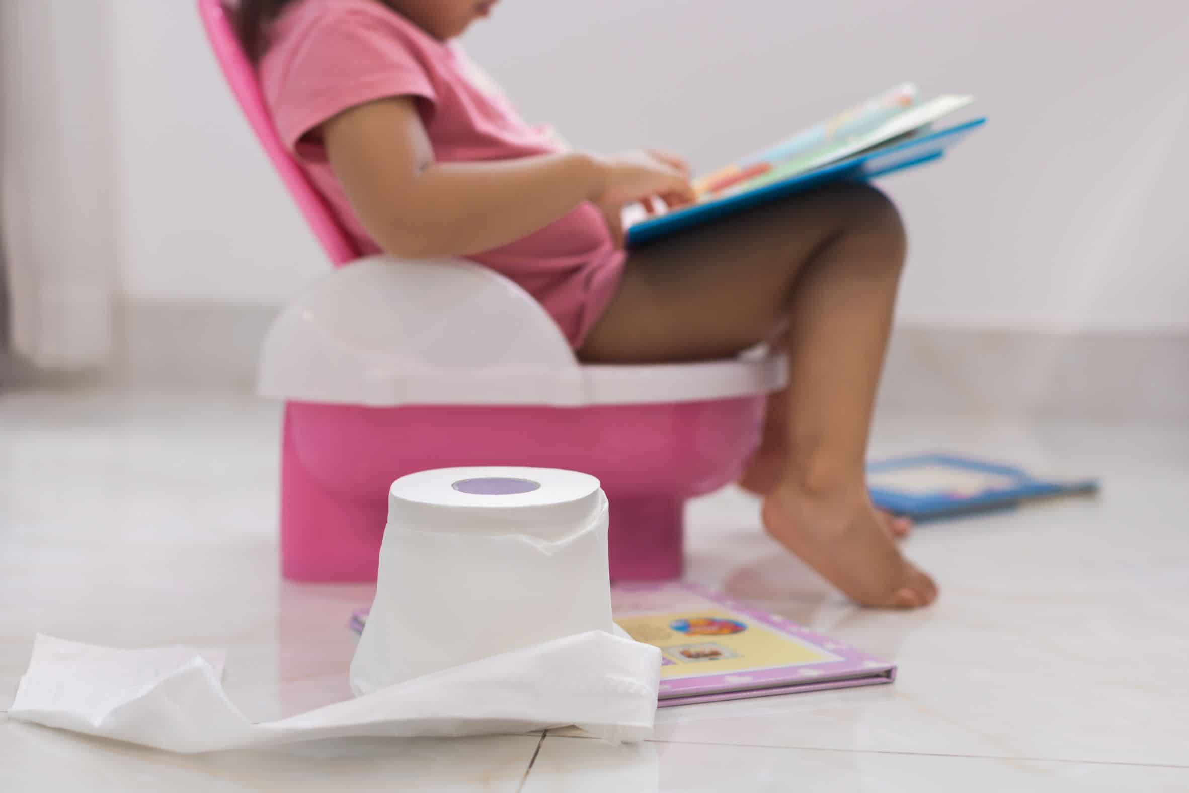 Potty Training Essentials   From potty to toilet training